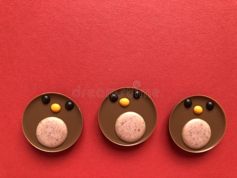 Conceito criativo do Natal, piscos de peito vermelho do chocolate no vermelho fotos de stock