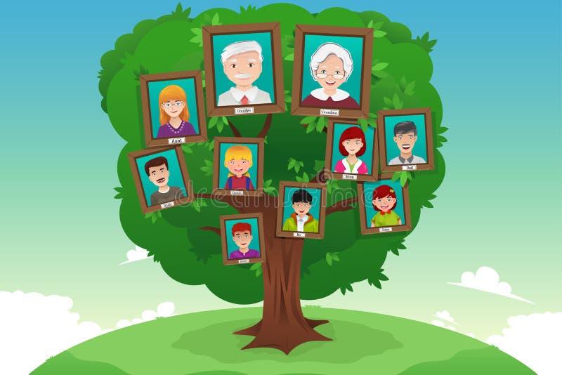 Conceito da árvore genealógica ilustração stock