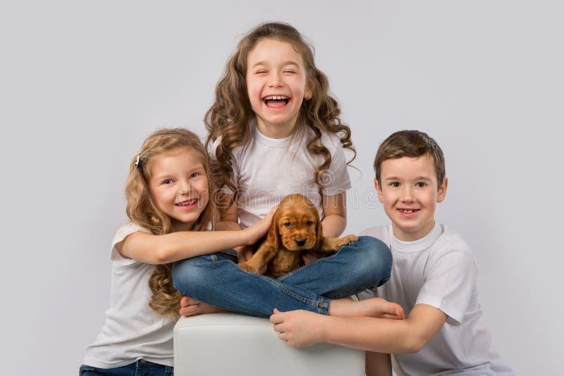 Conceito da amizade do animal de estimação das crianças - crianças que mantêm o cachorrinho vermelho isolado no fundo branco fotos de stock royalty free
