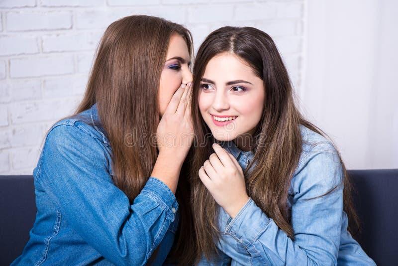 Conceito da amizade - duas meninas de sorriso que sussurram a bisbolhetice no livi imagens de stock