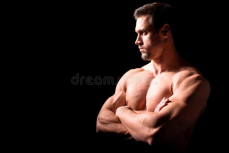 Conceito da aptidão Torso muscular e 'sexy' do homem novo que tem o pão masculino perfeito do Abs, do bíceps e da caixa com corpo fotografia de stock