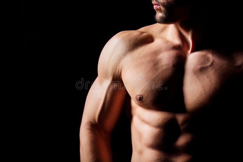 Conceito da aptidão Torso muscular e 'sexy' do homem novo que tem o pão masculino perfeito do Abs, do bíceps e da caixa com corpo foto de stock royalty free