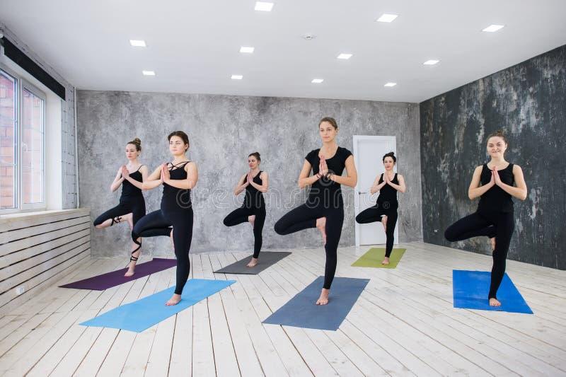 Conceito da classe do exercício de prática da ioga imagem de stock