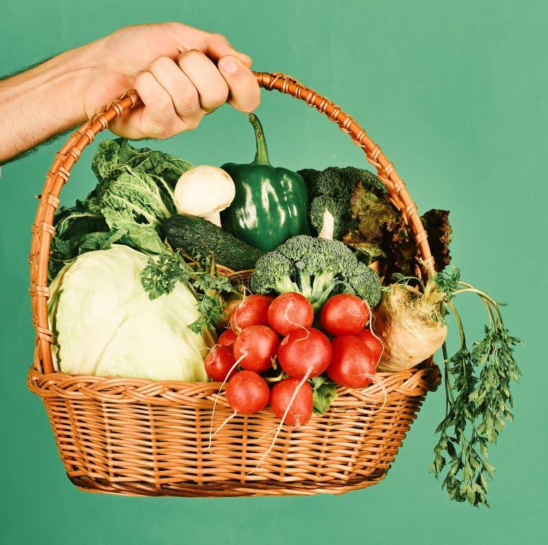 Conceito da colheita dos fazendeiros Cesta de vime com legumes frescos fotografia de stock royalty free