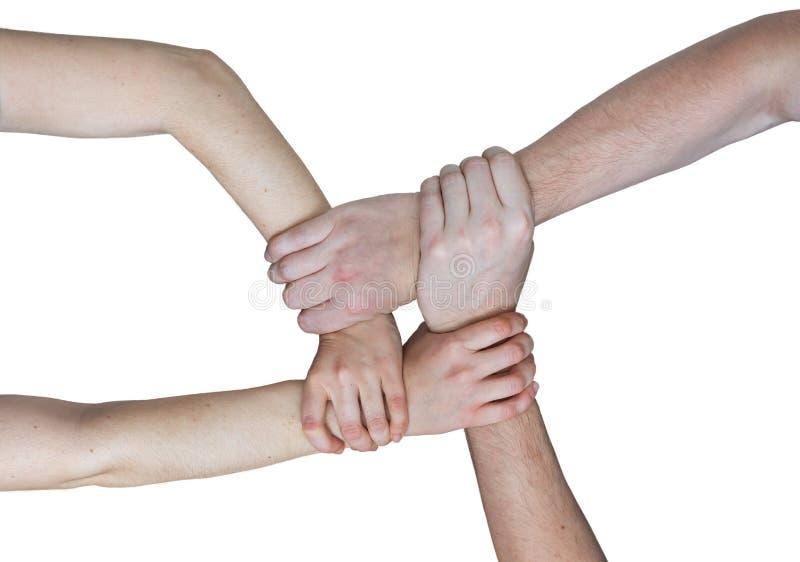 Conceito da comunidade e dos trabalhos de equipe Mãos que mantêm-se unidas Isolado no fundo branco imagens de stock
