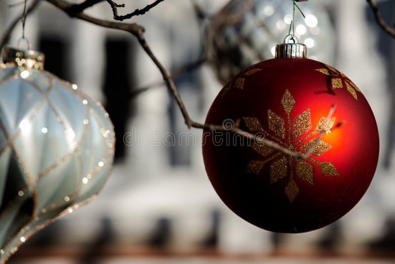 Conceito da decoração do feriado de inverno: Árvore despida sem folhas decoradas com as bolas do vintage do Natal imagem de stock royalty free