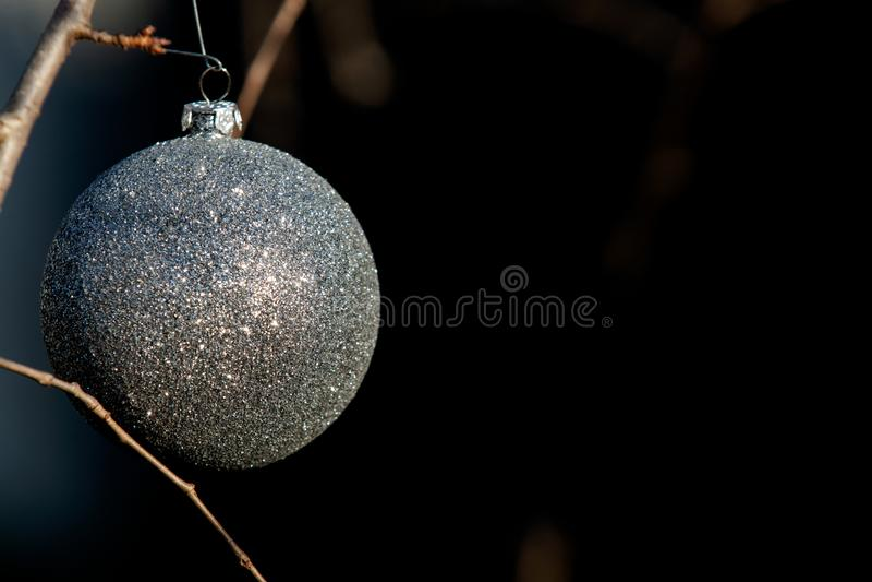 Conceito da decoração do feriado de inverno: Árvore despida sem folhas decoradas com as bolas do vintage do Natal imagens de stock royalty free
