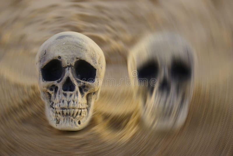 Conceito da doença bipolar: dois crânios na areia fotos de stock