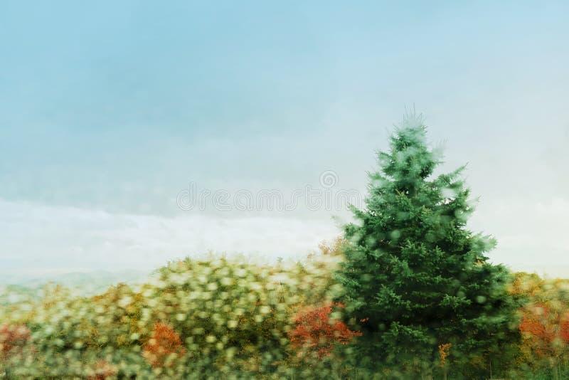 Conceito da estação da queda, do outono e do inverno Borrado do dia nevado dentro imagens de stock