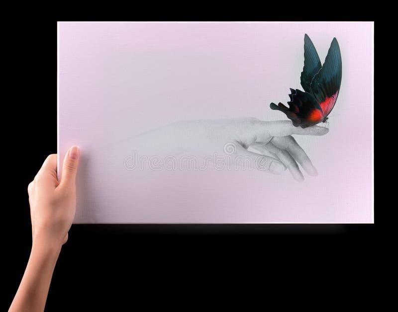 Conceito da inspiração com borboleta bonita foto de stock