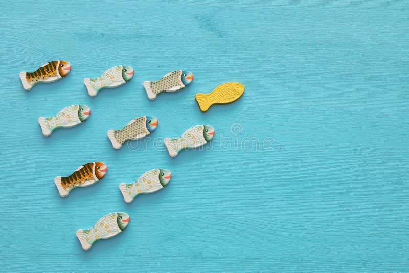 Conceito da liderança com os peixes da natação no fundo de madeira Um líder conduz outro fotografia de stock