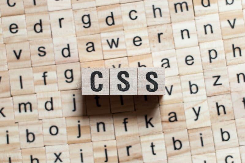 Conceito da palavra do Css imagens de stock royalty free