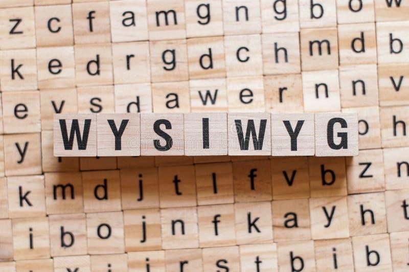 Conceito da palavra do Wysiwyg imagem de stock
