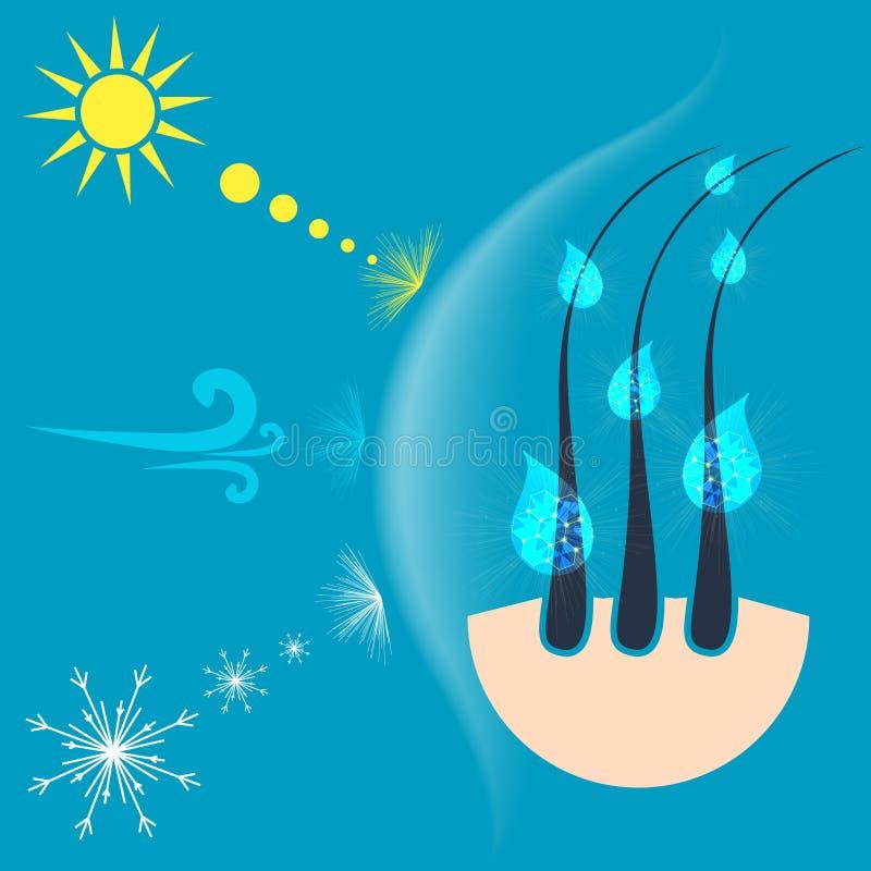 Conceito da proteção do cabelo ilustração do vetor