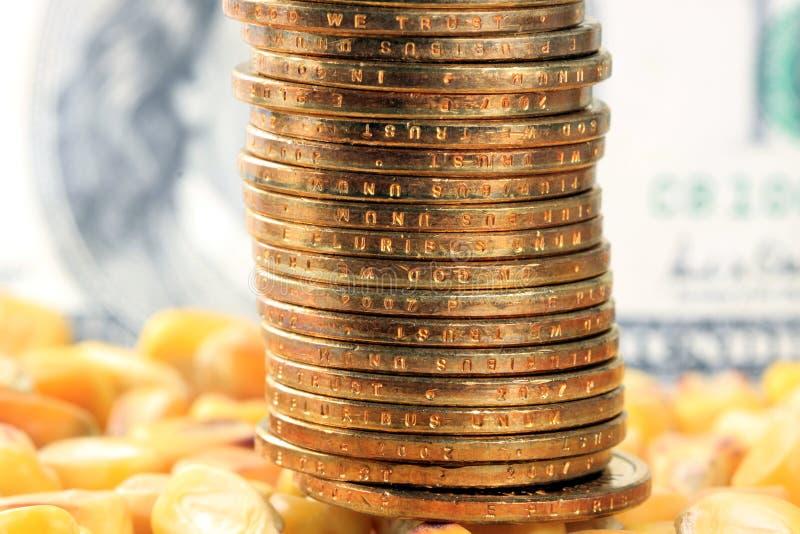 Conceito da troca de mercadoria - moeda dos E.U. das moedas de ouro com milho amarelo foto de stock