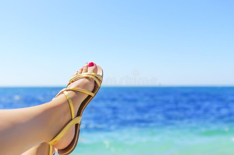 Conceito das férias foto de stock