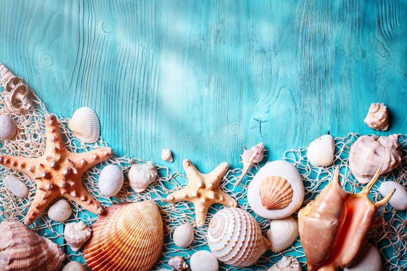 Conceito das horas de verão com conchas do mar e estrela do mar em placas de madeira azuis Resto na praia Fundo com espaço da cóp fotografia de stock royalty free