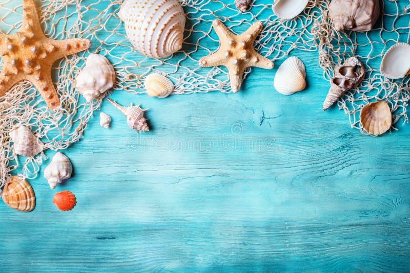 Conceito das horas de verão com conchas do mar e estrela do mar em placas de madeira azuis Resto na praia Fundo com espaço da cóp fotos de stock