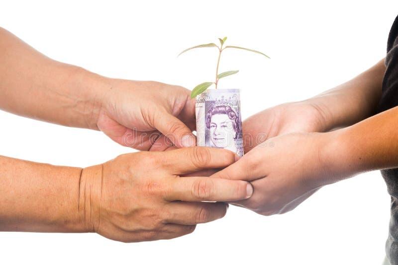 Conceito de apresentar a planta que cresce Sterling Pound, simbolizando foto de stock