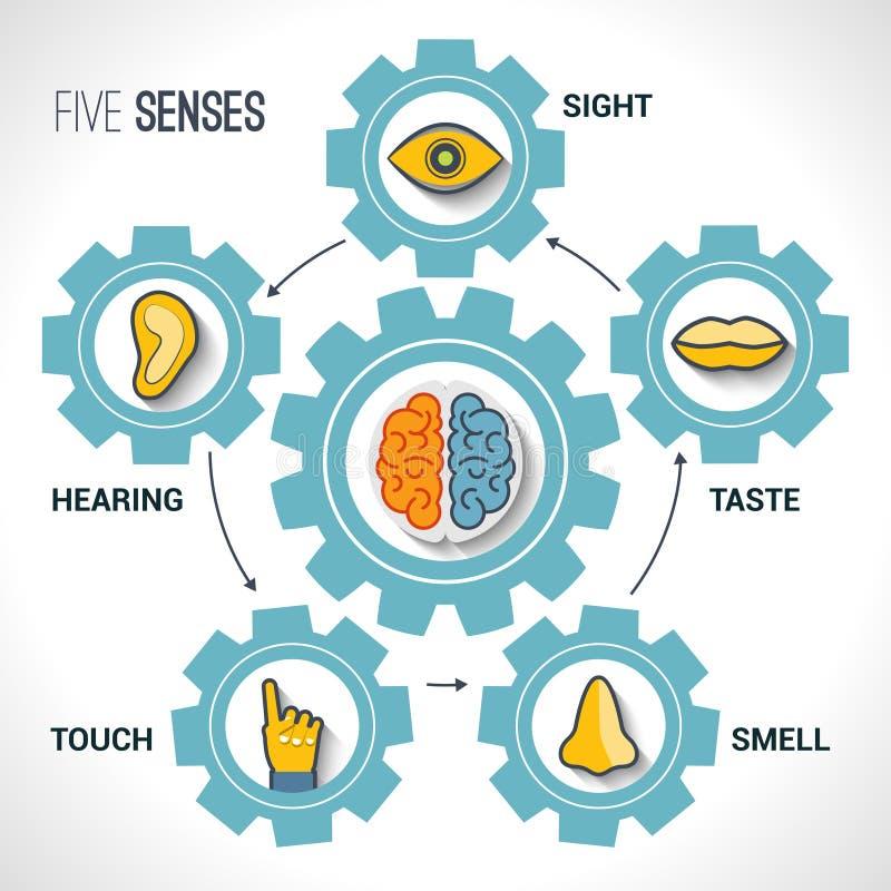 Conceito de cinco sentidos ilustração royalty free