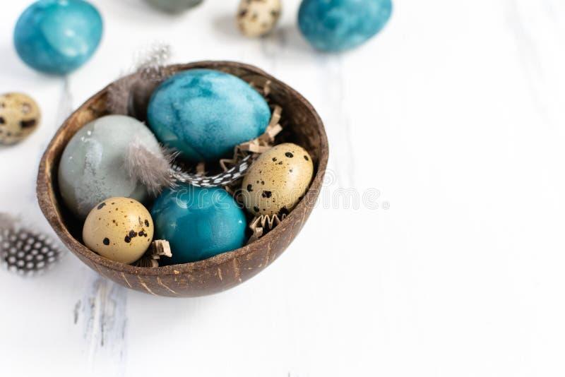 Conceito de easter da mola, - ovos da páscoa naturalmente tingidos, ovos de codorniz, penas, fundo de madeira branco, espaço da imagens de stock