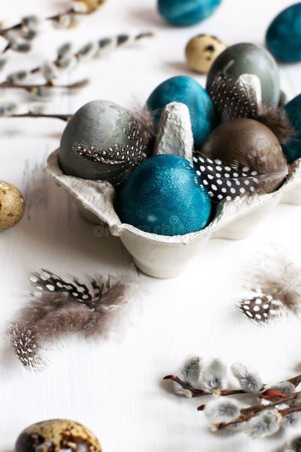 Conceito de easter da mola, - ovos da páscoa naturalmente tingidos, ovos de codorniz, penas, fundo de madeira branco, espaço da fotos de stock royalty free