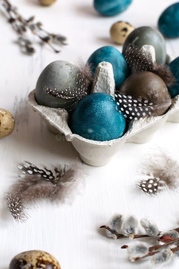 Conceito de easter da mola, - ovos da páscoa naturalmente tingidos, ovos de codorniz, penas, fundo de madeira branco, espaço da foto de stock