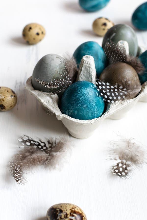 Conceito de easter da mola, - ovos da páscoa naturalmente tingidos, ovos de codorniz, penas, fundo de madeira branco, espaço da imagens de stock royalty free