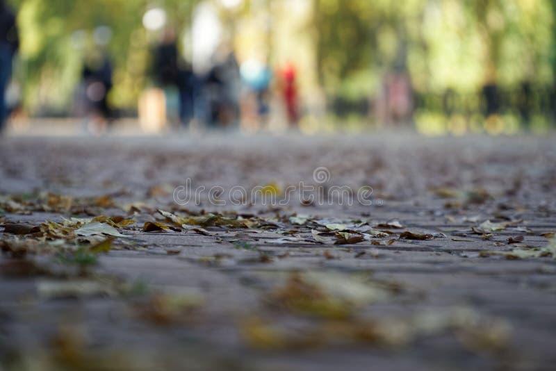 Conceito de GDPR, multidão do borrão na rua da cidade, passeio defocused do grupo de pessoas Ideias gerais do regulamento da prot imagens de stock