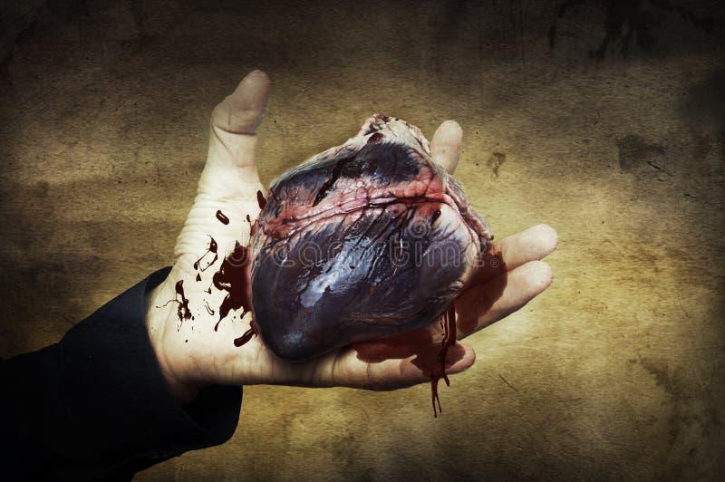 Conceito de Halloween. coração à disposicão com sangue imagens de stock