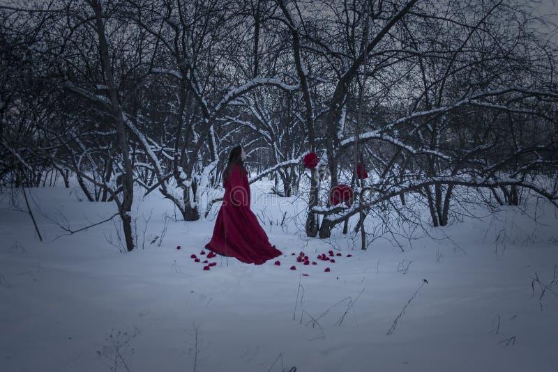 Conceito de Halloween Uma bruxa em uma noite vermelha foto de stock
