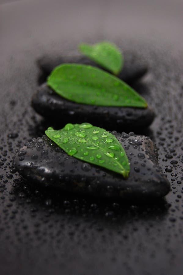 Conceito de pedra do wellness do zen fotografia de stock