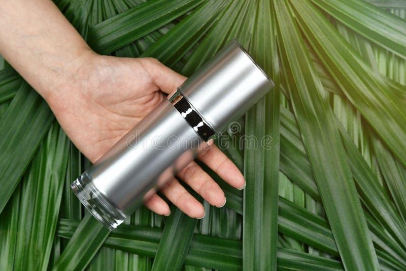 Conceito de produto natural da beleza do skincare, recipientes cosméticos da garrafa à disposição no fundo erval verde das folhas foto de stock