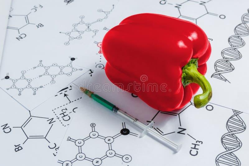 Conceito de produtos Não-naturais, Gmo Pimenta vermelha de Syringeand no fundo branco com fórmula química, foto de stock royalty free