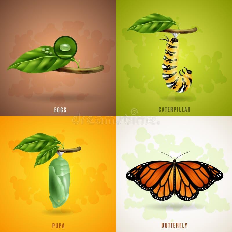 Conceito de projeto da borboleta 2x2 ilustração royalty free