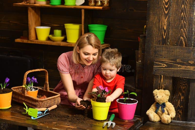 Conceito de projeto Flor do potting da mulher e da criança, projeto Projeto de Eco no interior da casa Fundo floral do projeto?,  foto de stock
