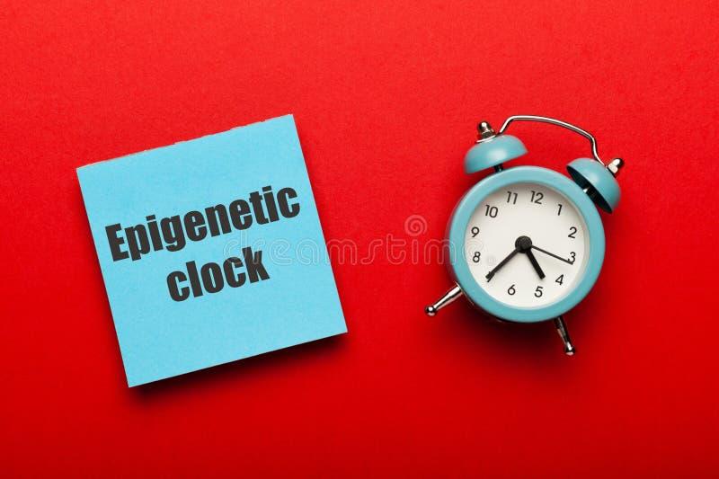 Conceito de relógio Epigenético Envelhecimento biológico do corpo humano, investigação na velhice imagens de stock