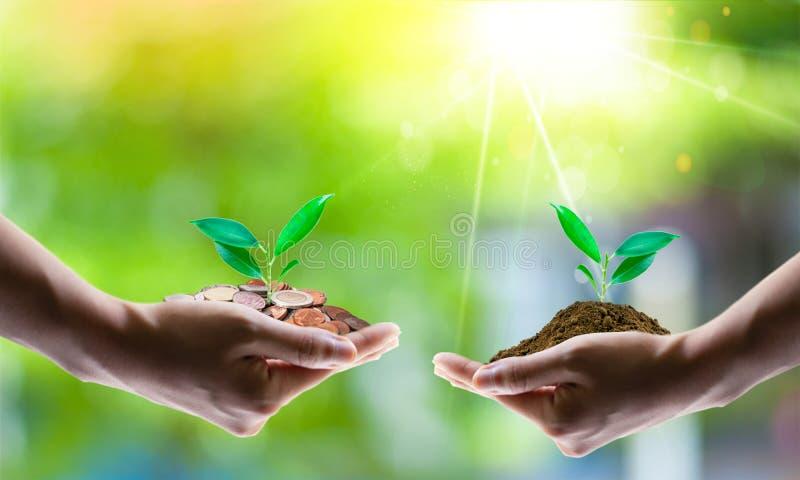 Conceito de salvamento da energia com terra e plantação de árvores em voluntários foto de stock