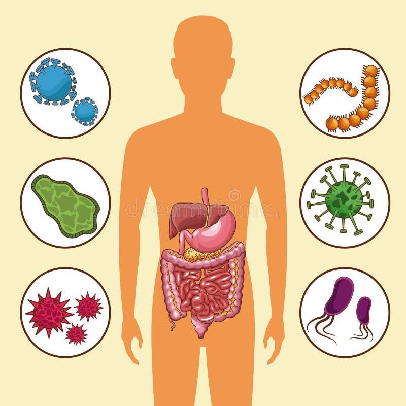 Conceito de sistema digestivo ilustração stock