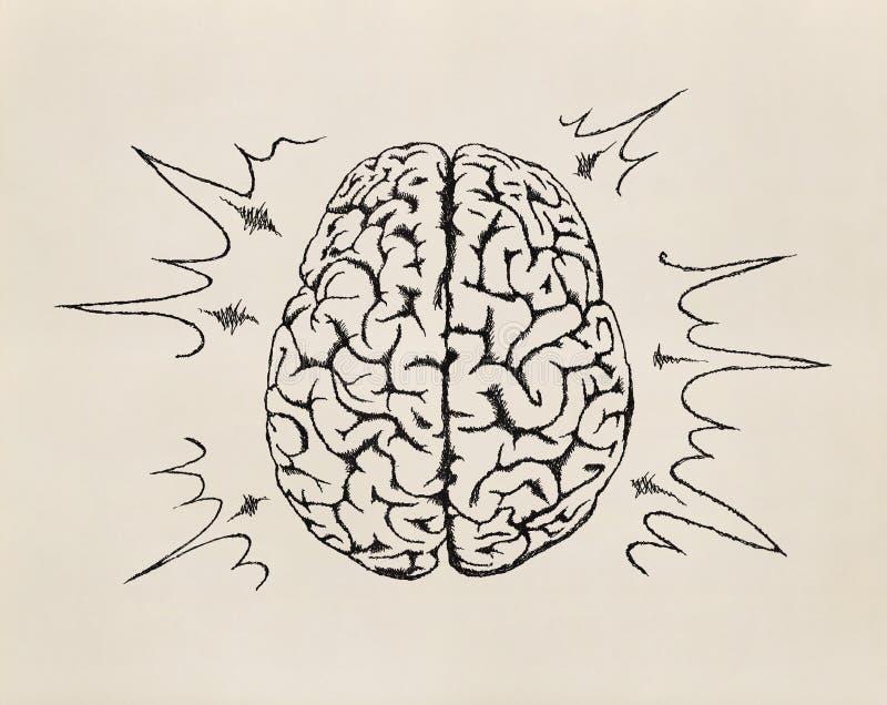 Conceito de trabalhar o cérebro humano. Esboço. ilustração stock