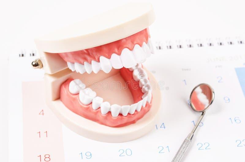 Conceito dental da nomeação fotos de stock