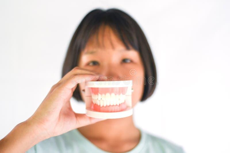 Conceito dental dos dentes da escova da saúde e da criança/menina asiática da criança que guarda a prótese dental, dentaduras par fotos de stock royalty free
