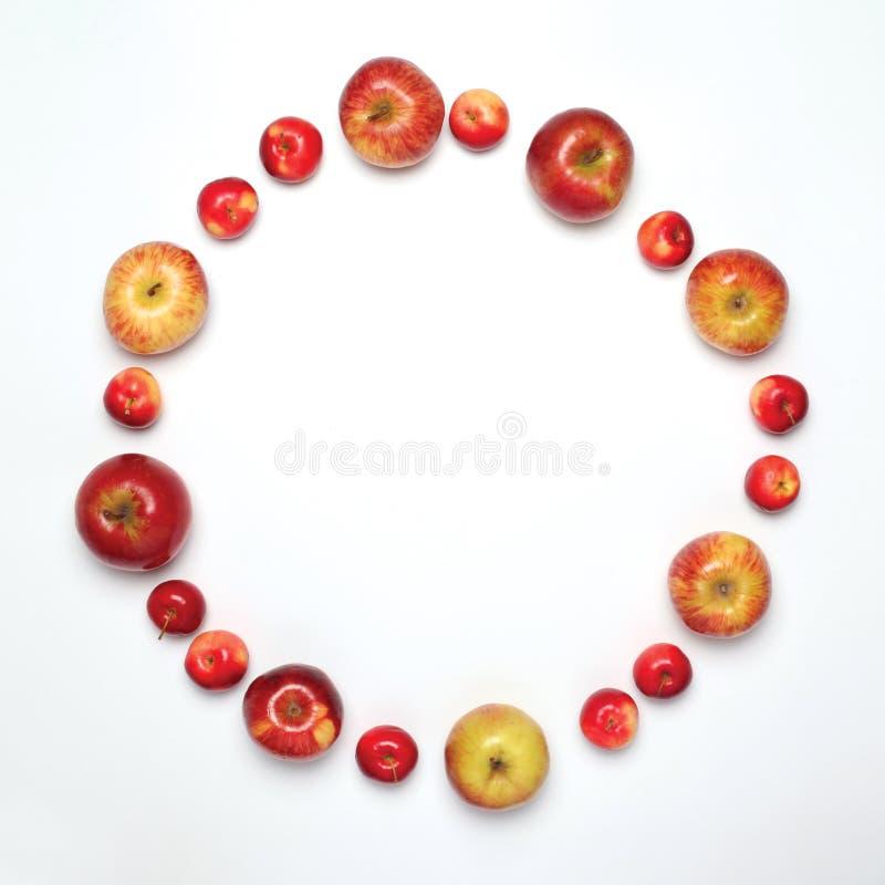 Conceito do alimento - muitas maçãs frutificam na forma do círculo isolada fotos de stock