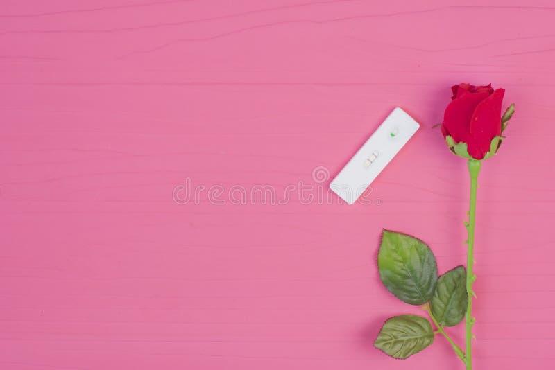 Conceito do amor: Jogo da rosa do vermelho e do teste de gravidez em vagabundos de madeira cor-de-rosa fotos de stock