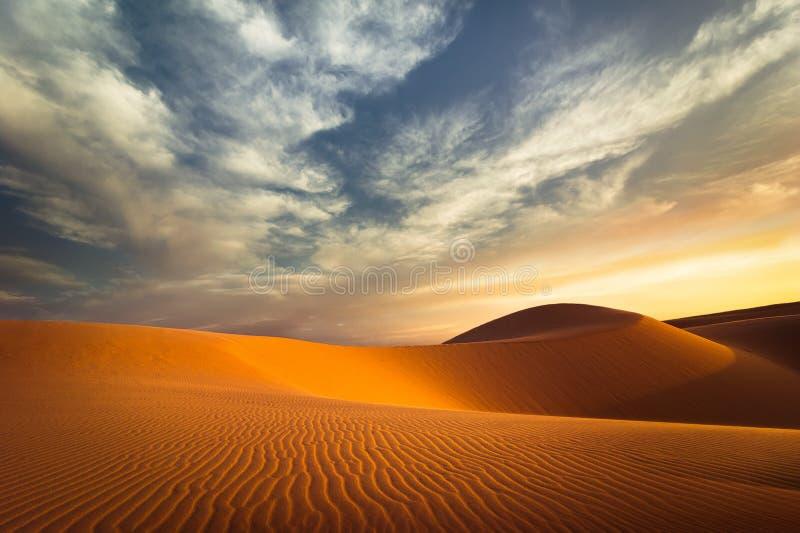 Conceito do aquecimento global Dunas de areia sós no deserto do por do sol fotografia de stock royalty free