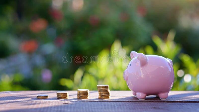 Conceito do aumento do investimento e do lucro pilha de crescimento das moedas fotos de stock royalty free