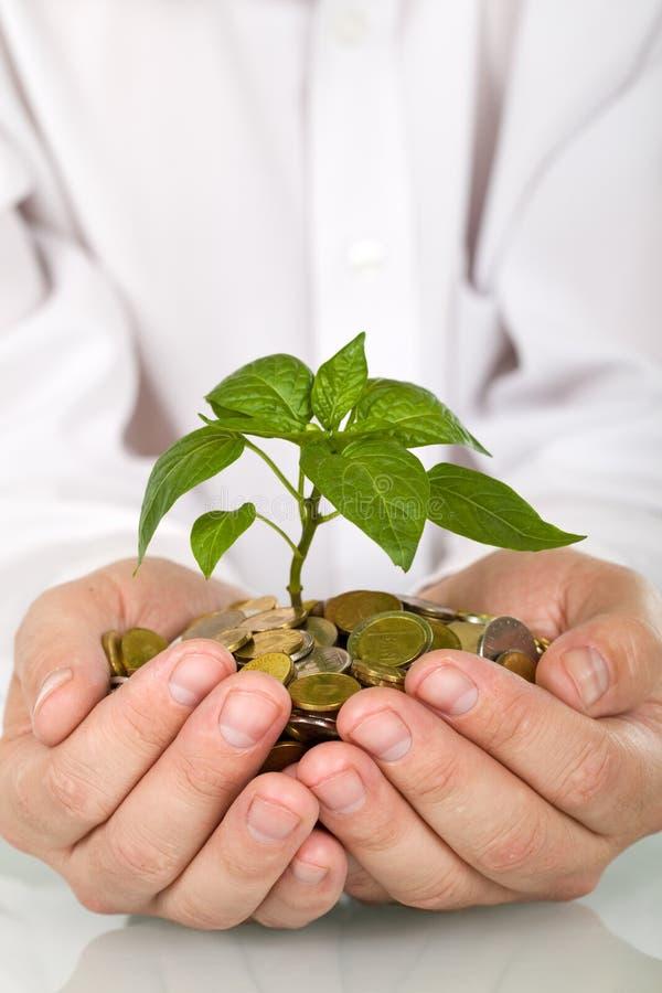 Conceito do bom investimento e do dinheiro imagem de stock