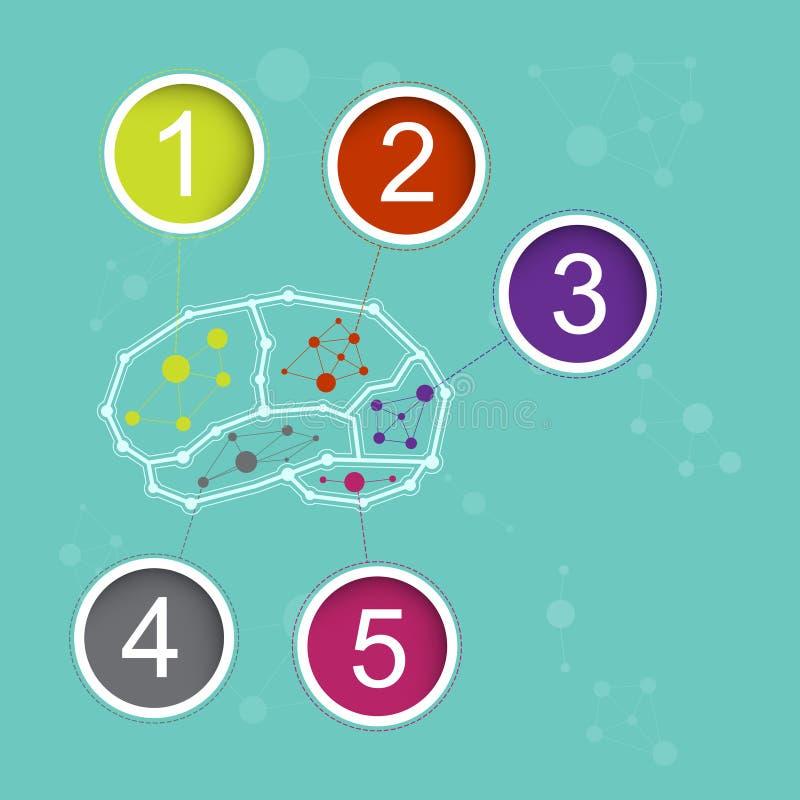 Conceito do cérebro de Infographics ilustração royalty free