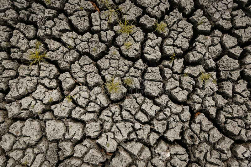 Conceito do clima aquecendo-se, quente e seco global, clima da mudança, terra para colheitas constantes ilustração royalty free