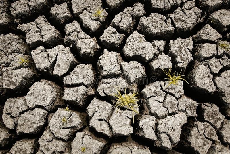 Conceito do clima aquecendo-se, quente e seco global, clima da mudança, terra para colheitas constantes ilustração stock